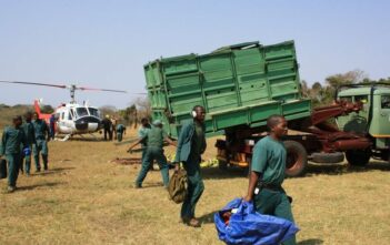 Loading and Moving Rhino