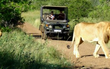 Rhino River Lodge introducing Rhino Sands Safari Camp