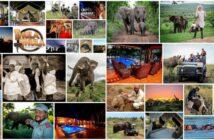 Thula Thula Celebrates 20 Years
