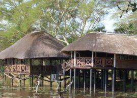 Bonamanzi Game Reserve: Flora, Fauna & Natural Heritage