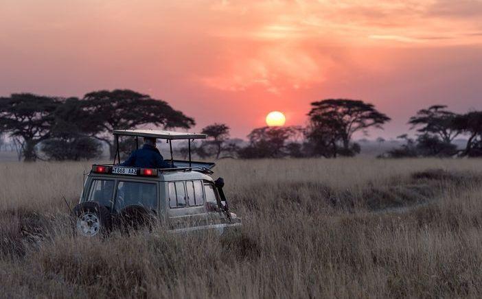 Zululand SafariKZN