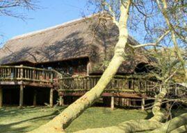 Safari Lodges – Locked Down