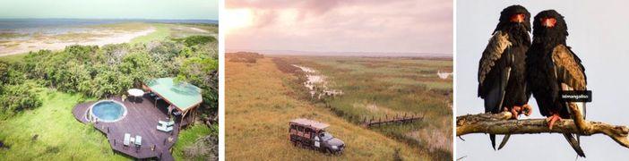 Twitching in KwaZulu-Natal