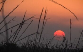 iSimangaliso Wetland Park receives International Award