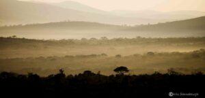 Masinda Lodge, Hluhluwe iMfolozi Game Reserve