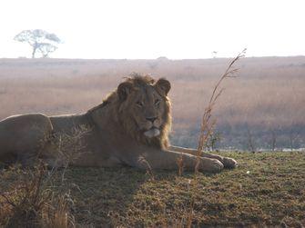 9 Day Adventure Safari